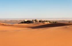 Oásis no deserto de Sahara Imagem de Stock
