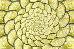 oändlig citrus Royaltyfri Fotografi