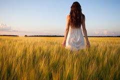 Oído conmovedor del trigo de la mujer en campo de trigo Imagen de archivo libre de regalías