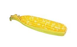 Oído de maíz dulce Imágenes de archivo libres de regalías