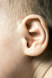 Oído del bebé Imagenes de archivo