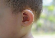 Oído del bebé Imagen de archivo libre de regalías