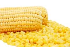 Oído del maíz fresco imágenes de archivo libres de regalías
