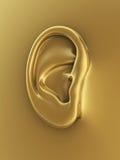 Oído del ser humano del oro Fotos de archivo libres de regalías