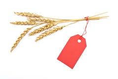 Oído del trigo con la etiqueta roja Imagen de archivo libre de regalías