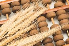 Oído del trigo en el ábaco foto de archivo libre de regalías