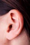 Oído femenino fotografía de archivo