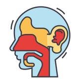 Oído, nariz, garganta, concepto ent Stock de ilustración