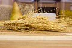 Oídos de cereales Fotografía de archivo libre de regalías