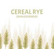 Oídos de la frontera inconsútil de los cereales Ejemplo del vector del centeno, del trigo o de la cebada ilustración del vector