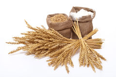 Oídos de la harina y del trigo Foto de archivo libre de regalías
