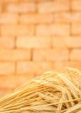 Oídos de oro frescos de la cebada del trigo con el fondo del ladrillo del vintage fotos de archivo libres de regalías