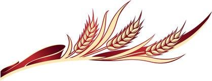 Oídos del trigo con las hojas en la cinta roja Imagen de archivo libre de regalías
