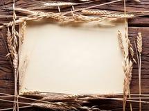 Oídos del trigo en el marco de la forma. Fotos de archivo