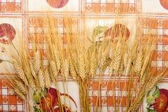 Oídos del trigo en mantel Fotos de archivo libres de regalías