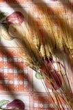 Oídos del trigo en mantel Fotografía de archivo