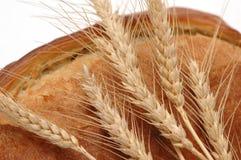 Oídos del trigo y aislador del pan del pan imagen de archivo