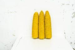 Oídos dulces amarillos del maíz por la pared blanca Imagenes de archivo