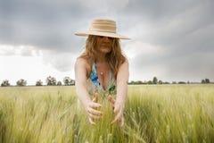 oídos hermosos del abarcamiento de la señora del trigo al aire libre Fotografía de archivo libre de regalías