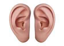 Oídos humanos imagenes de archivo