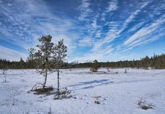 Облака цирруса в Аляске стоковые изображения rf