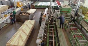Обработка древесины на конвейерной ленте на взгляде сверху фабрики woodworking Предпосылки современной фабрики woodworking акции видеоматериалы