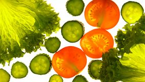 Обработка овощей с освещением, необыкновенная консервация продукта, gmo свободная от стоковая фотография rf