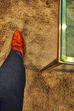Одежда Браун дела шлихты силы стеклянного стола обувает брюки голубых носков черные стоковое изображение