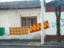 Одеяло на ветре стоковое фото