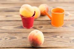 Один свежий весь зрелый персик в красном ведре металла и 3 персиках отдельно и оранжевой моча консервной банке стоковые фотографии rf