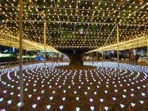 Освещения зимы в японском парке цветка стоковые фото