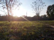 Осень_в_парке Stock Image