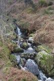 осень раньше сделала изображением гор горы приполюсный поток стоковое фото rf