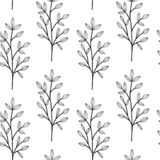Black on white herbs. Wild flowers vector. Seamless pattern. Endless pattern for wallpaper, pattern fills, web page background, surface textures. Hand drawn stock illustration