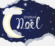 Lettering joyuex noel vector illustration