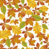 Pattern of autumn leaves royalty free illustration