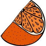 Handdrawn orange slice vector illustration