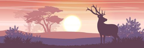 Silhouette. Wild reindeer in the valley royalty free illustration