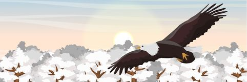 A big bald eagle flies over treetops in the snow vector illustration