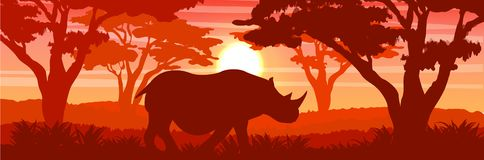 Silhouette. A large white rhino in the African savannah royalty free illustration