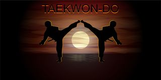 Fighting Taekwondo silhouettes royalty free stock image