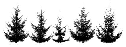Forest Christmas trees, set royalty free illustration