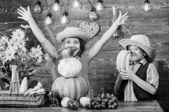 Отпразднуйте праздник сбора Дети играют предпосылку овощей деревянную Идея фестиваля падения начальной школы Ягнит девушка стоковые изображения