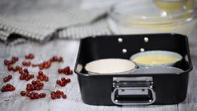 Отростчатый делая creme brulee традиционно Лить смесь в ramekins сток-видео