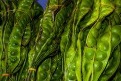 Oöppnade haricot vert på marknaden arkivfoto