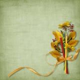 ołówek karciana papierowa szkoła Zdjęcia Royalty Free