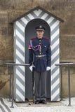 Żołnierz w przodzie Zdjęcie Royalty Free