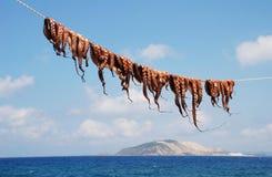 Ośmiornicy linia, Nisyros Fotografia Stock