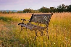 Ośniedziała ławka przy półmrokiem porzucającym w dzikim polu Zdjęcie Royalty Free