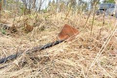 Ośniedziała łopata w suchej trawie Zdjęcie Stock